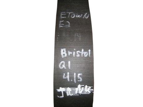 tasca-belt2